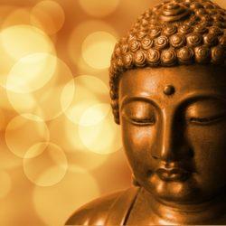 amazing I AM affirmations buddha meditation mindfulness
